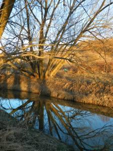 February 2014 Reflections 039