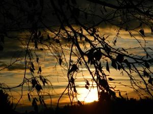 February2014 sunset 007