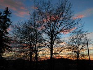 February2014 sunset 055