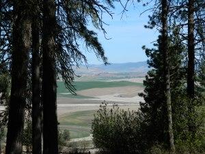 Kamiah Butte April 001
