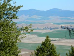 Kamiah Butte April 057
