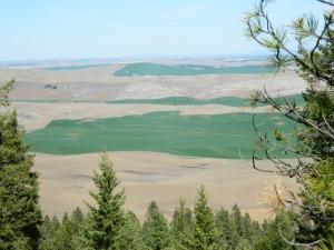 Kamiah Butte April 093