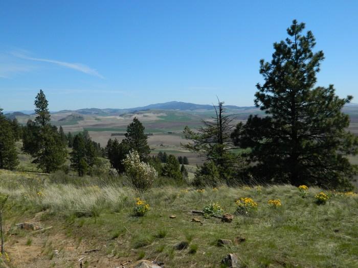 Kamiah Butte April 144