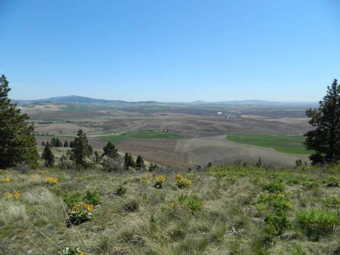 Kamiah Butte April 152