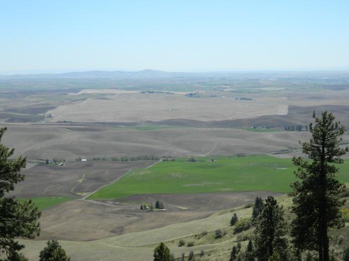 Kamiah Butte April 211