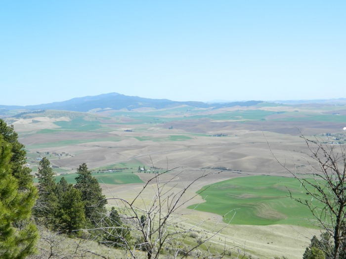 Kamiah Butte April 259